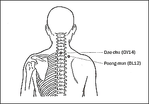 Ilchi Lee - acupressure points for colds and flu