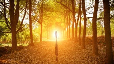 person walking into the setting sun in a forest