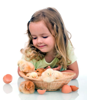 girl with baby chickens/chicks