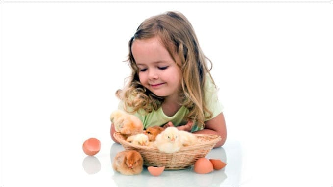 Young girl with a newly hatched chick