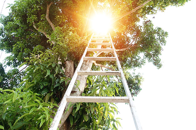 ladder to the sky | The Tao of Suicide