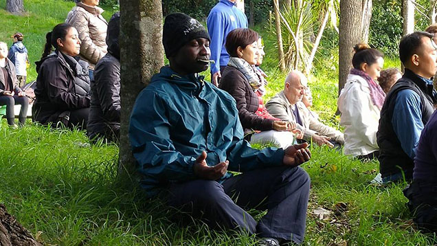 Group meditating on a grassy clearing in the woods in New Zealand