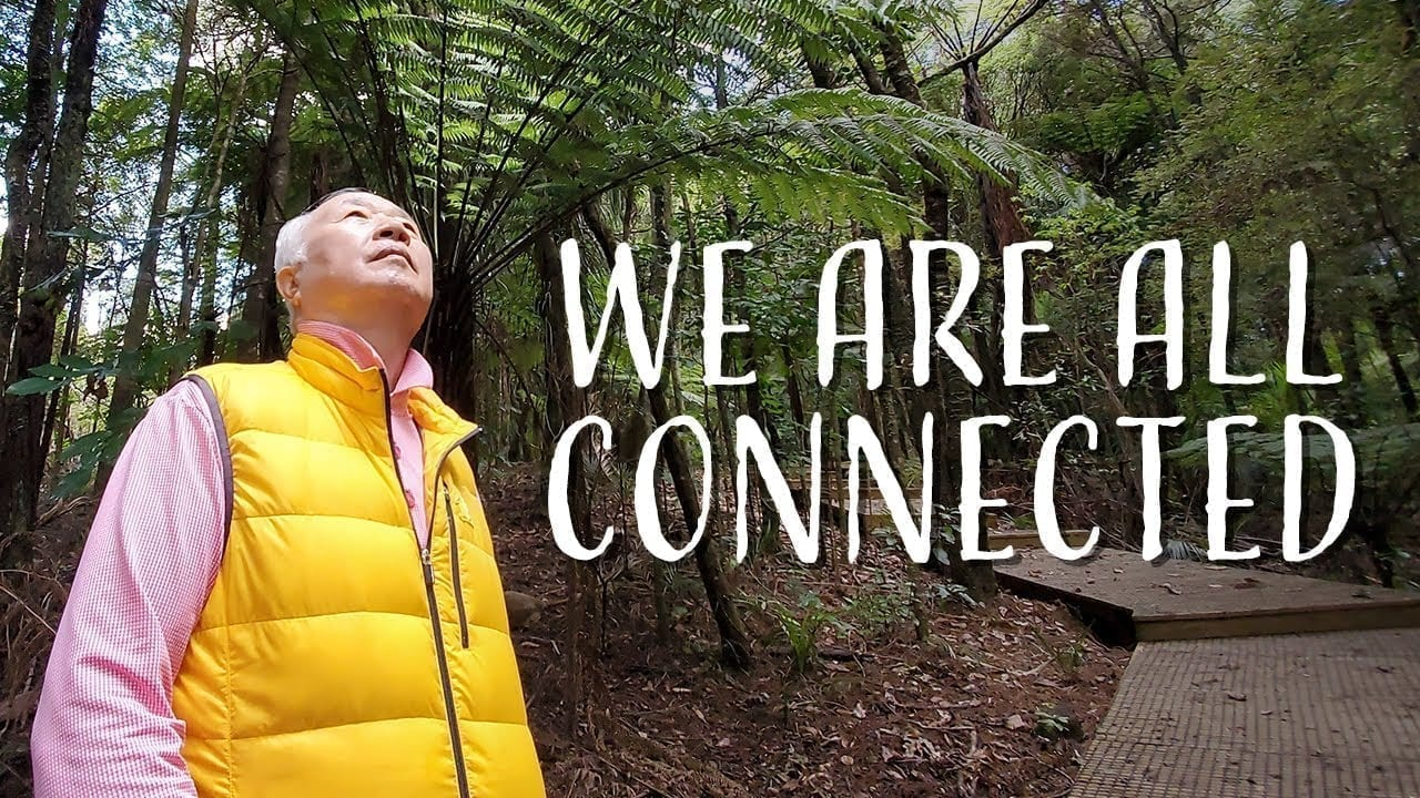 Ilchi Lee in New Zealand forest | We are all connected