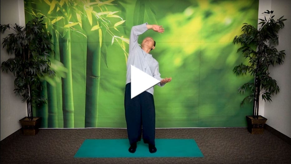 Water Up Fire Down Qigong Routine